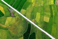 Купівля та продаж земельних ділянок